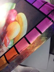 stglass022