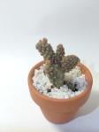 flowervase012