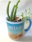 mugcupflowervase015